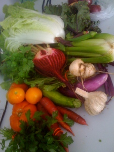 it's a vegetable rainbow!
