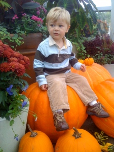 sitting on a giant pumpkin at Meijer gardens