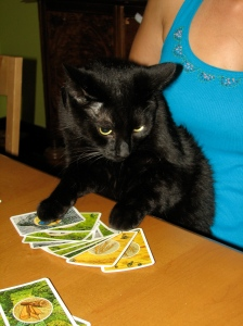 conan really likes playing Settlers of Catan with us, though he is a bit of a card hoarder